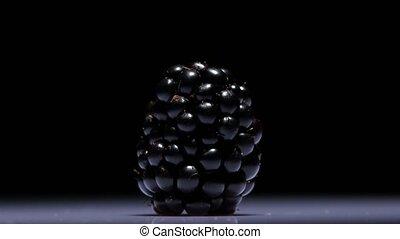 Blackberry. Black. Rotating. Close up - Fresh berry...