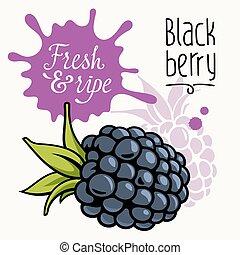 Blackberry concept