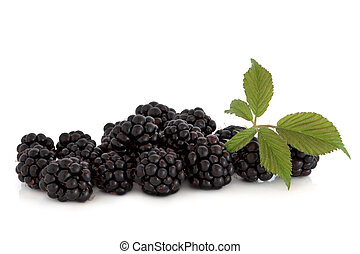 Blackberry fruit with leaf sprig, isolated over white background.