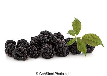 Blackberry Fruit - Blackberry fruit with leaf sprig,...