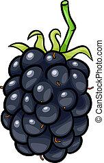 blackberry fruit cartoon illustration