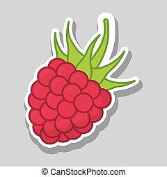 blackberry icon design , vector illustration