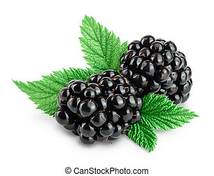blackberry with leaf isolated on a white background closeup. Clipping path and full depth of field