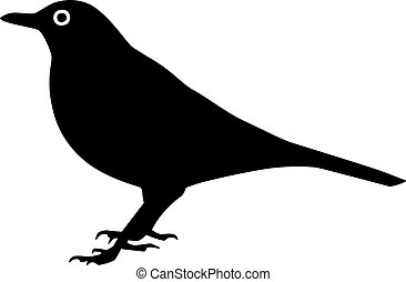 Blackbird silhouette with eye
