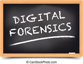 Blackboard Digital Forensics