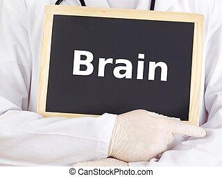 blackboard:, informationen, shows, gehirn, doktor