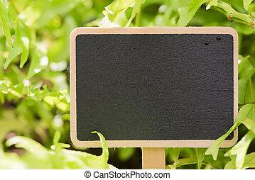 Blackboard over green field background