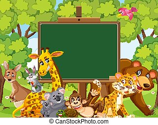 Blackboard template design with wild animals in the forest