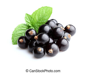 Blackcurrant with mint