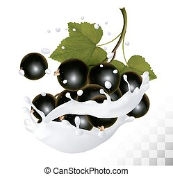 Blackcurrants in a milk splash on a transparent background. Vector icon.