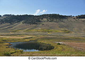 Blacktail Ponds at Yellowstone National Park in the USA