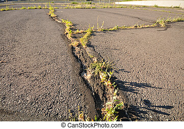 Blacktop lot with grass growing fro