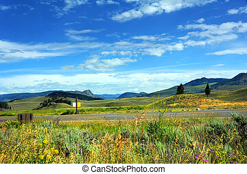 """Road travels through Lamar Valley in Yellowstone National Park. Scenic vista shows mountains, hills, and wildflowers. Rustic sign reads """"Caution Wildlife on Roadway."""""""