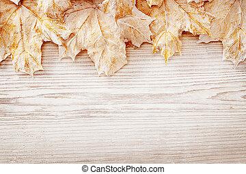 blad, houten, bladeren, herfst, houtstructuur, plank,...