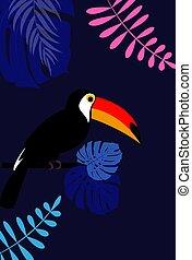 blad, illustratie, vector, toucan, achtergrond, keerkring, palm, vogel, design.