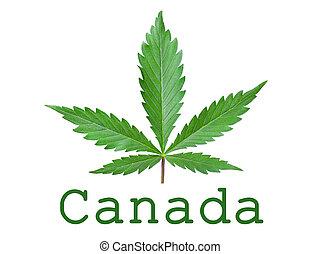 blad, isolated., symbool, tekst, ruimte, cannabis, legalization, kopie, groene, hennep, canada