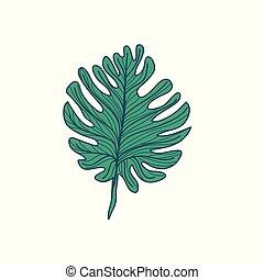blad, lobed, illustration, hånd, tropisk, stram