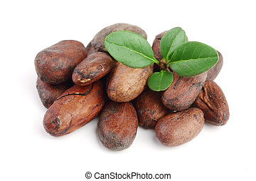 blad, macro, bovenzijde, vrijstaand, cacao, boon, unpeeled, achtergrond, witte , aanzicht