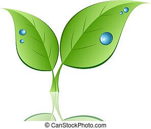 blad, med, vatten gnuttar