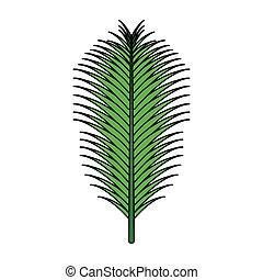 blad, palm, groene