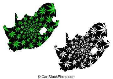 blad, sydafrika, cannabis, -, planlagt, karta