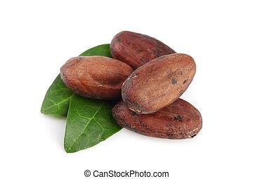 blad, vrijstaand, cacao, boon, unpeeled, achtergrond, witte