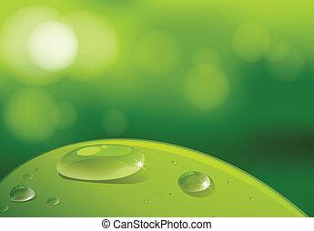 blad, waterdrops