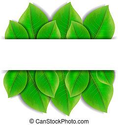 bladen, grön