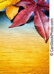 bladen, höst, bakgrund, träd