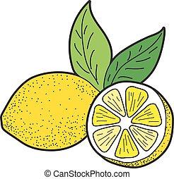 bladeren, citroen