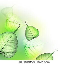bladeren, design., floral, groene, mooi