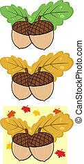 bladeren, eik, eikeltjes, verzameling
