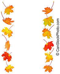 bladeren, esdoorn, achtergrond, herfst