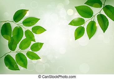 bladeren, fris, achtergrond, vector, groene, illustration., natuur