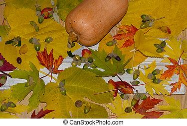bladeren, gevallen, bos, bomen