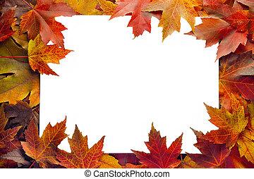 bladeren, grens, esdoorn, herfst