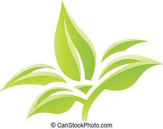 bladeren, groene, glanzend, pictogram