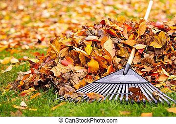 bladeren, hark, herfst