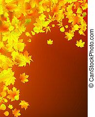 bladeren, herfst, achtergrond