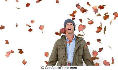 bladeren, het kijken, het vallen, man, verbaasd