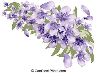 bladeren, lavendel
