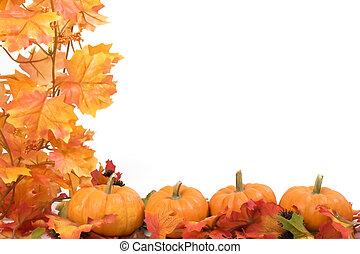 bladeren, pompoennen, herfst