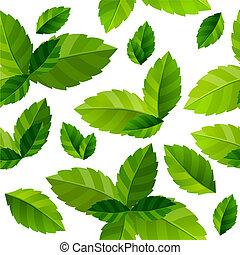 bladeren, seamless, groene achtergrond, fris, munt