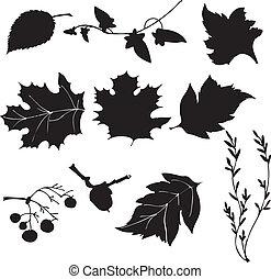 bladeren, vector, silhouette