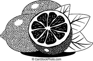 bladeren, verse citroenen