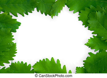 bladeren, vrijstaand, papier, groene achtergrond, frame