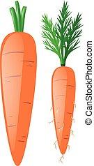 bladeren, wortels, wortels