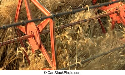 Blades Combine Harvester Cut Ripe Ears Of Wheat.
