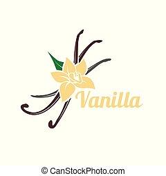 blanc, arrière-plan., silhouette, vanille, isolé, pods., icône, vecteur, fleur