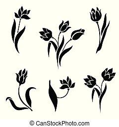 blanc, arrière-plan., silhouettes, tulipes